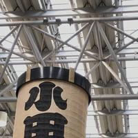 小田原駅の写真・動画_image_304167