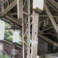 熱海ロープウェイの写真・動画_image_304222