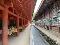 榎本神社の写真・動画_image_305168
