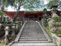 榎本神社の写真・動画_image_305169