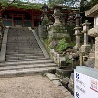 榎本神社の写真・動画_image_305170