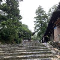 東大寺鐘楼(奈良太郎)の写真・動画_image_305178
