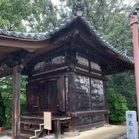 東大寺鐘楼(奈良太郎)の写真・動画_image_305183