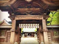 宇都宮二荒山神社の写真・動画_image_305825