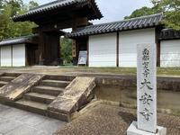大安寺の写真・動画_image_306931