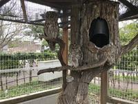 京急油壺マリンパークの写真・動画_image_307241