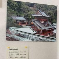 静岡浅間神社の写真・動画_image_307481