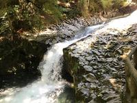 河津七滝の写真・動画_image_311019