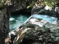 河津七滝の写真・動画_image_311020