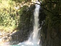 河津七滝の写真・動画_image_311021