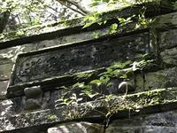 旧天城トンネルの写真・動画_image_311083