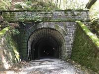 旧天城トンネルの写真・動画_image_311087