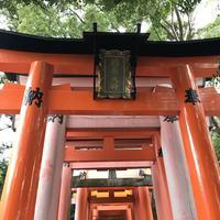 千本鳥居の写真・動画_image_312083