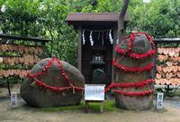 葛原岡神社の写真・動画_image_315134