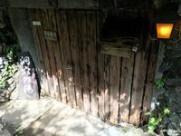 河津七滝の写真・動画_image_315389