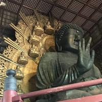 奈良駅の写真・動画_image_315836