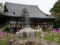 般若寺の写真・動画_image_317293
