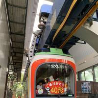 上野動物園の写真・動画_image_319742