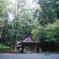 貴船神社の写真・動画_image_319767