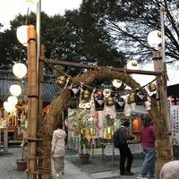 川越熊野神社の写真・動画_image_321385