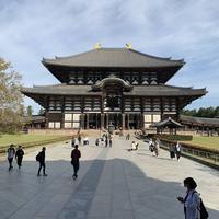 東大寺の写真・動画_image_321805