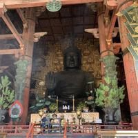 東大寺の写真・動画_image_321806