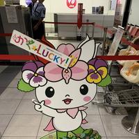 旭川空港の写真・動画_image_322124