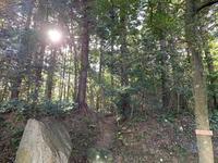 黄泉比良坂の写真・動画_image_323207