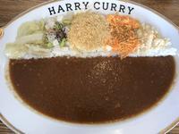 HARRY CURRY ハリーカリーの写真・動画_image_323531