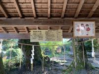 三朝神社の写真・動画_image_326377