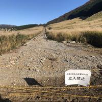 仙石原すすき草原の写真・動画_image_327063