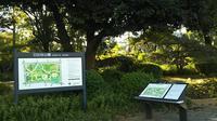 日比谷公園の写真・動画_image_328397