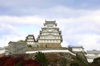 姫路城の写真・動画_image_330061