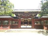 根津神社の写真・動画_image_330415