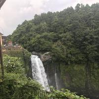 白糸の滝の写真・動画_image_330463