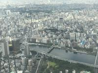 東京スカイツリーの写真・動画_image_330965