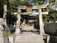 尾道市の写真・動画_image_331188