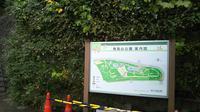飛鳥山公園の写真・動画_image_332245