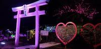 伊豆ぐらんぱる公園の写真・動画_image_334425