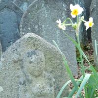 元興寺の写真・動画_image_335922