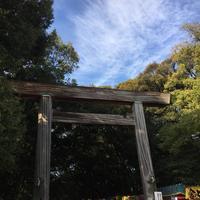 熱田神宮の写真・動画_image_336280