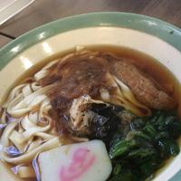 宮きしめん 神宮店の写真・動画_image_336347