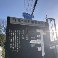 白川水源の写真・動画_image_338394