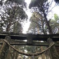 上色見熊野座神社の写真・動画_image_338404