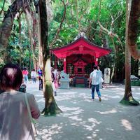 青島神社の写真・動画_image_339073