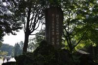 霧島神宮の写真・動画_image_339539