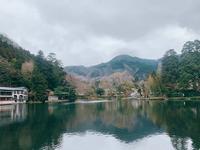 金鱗湖の写真・動画_image_339902