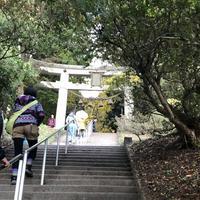 宝登山神社 奥宮の写真・動画_image_340277