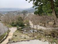 竈門神社の写真・動画_image_340616