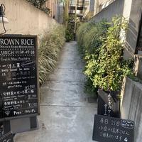 ブラウンライス(BROWN RICE)の写真・動画_image_341986